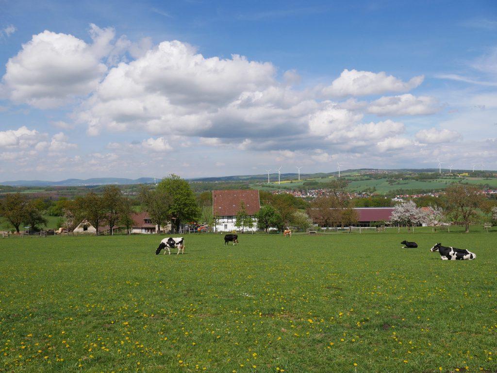 Familienbetrieb: Hof, Feld und Windräder